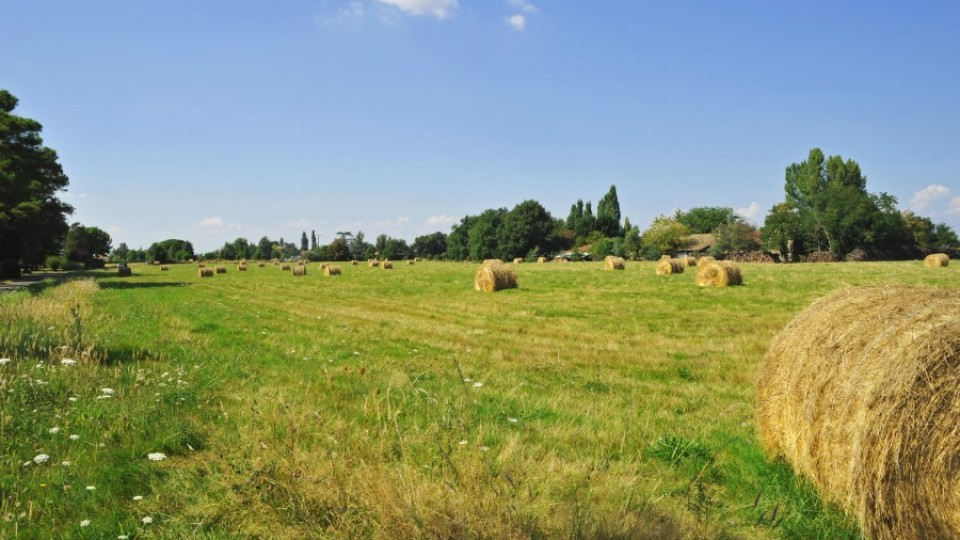 Lire l'agriculture biologique